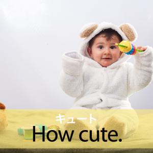「キュート」から学ぶ→ How cute.