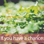 「チャンス」を知ってれば…ゼッタイ話せる英会話→  If you have a chance.
