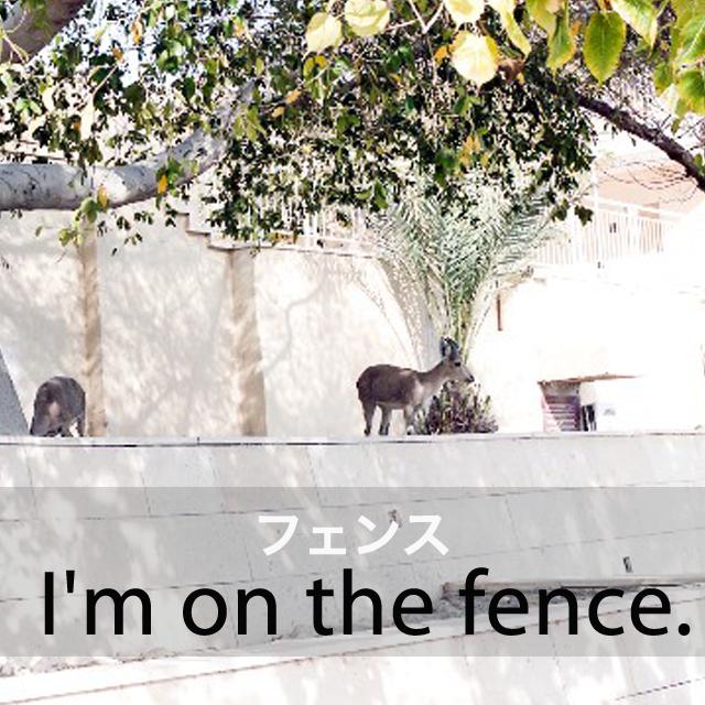 「フェンス」から学ぶ→ I'm on the fence.