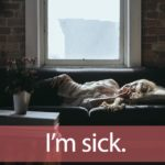 「シックハウス」から学ぶ→ I'm sick.