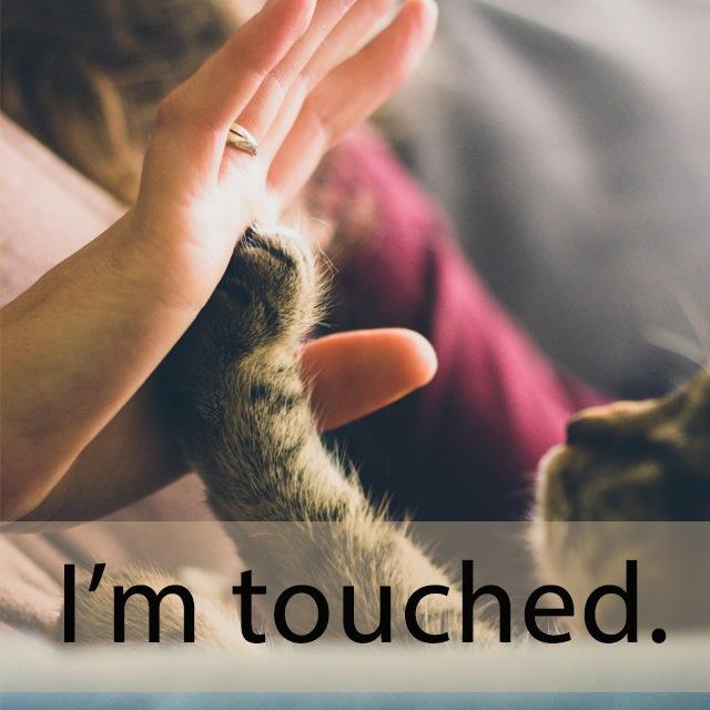 「タッチ」を知ってれば…ゼッタイ話せる英会話→ I'm touched.