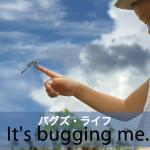 「バグズ・ライフ」から学ぶ→ It's bugging me.