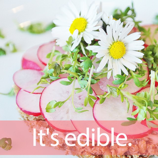 「エディブルフラワー」を知ってれば…ゼッタイ話せる英会話→  It's edible.