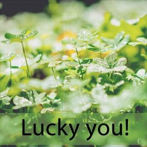 「ラッキー」を知ってれば…ゼッタイ話せる英会話 Lucky you!