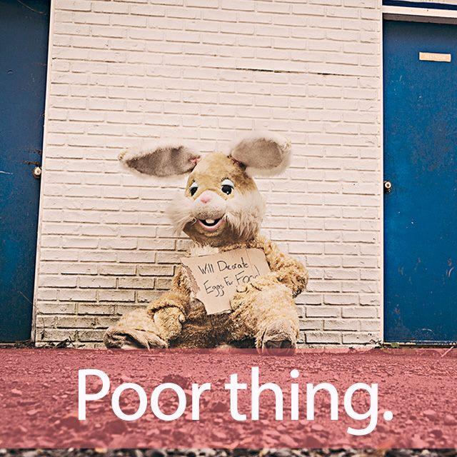「プア」を知ってれば…ゼッタイ話せる英会話→ Poor thing.