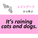 「レインブーツ」から学ぶ<br>It's raining cats and dogs.