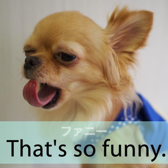 ファニー から学ぶ that s funny girllish 知っている英語から